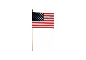 US HAND HELD FLAG SET 8IN.HX12IN.W PK12 by Annin Flagmakers