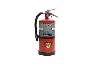 FIRE EXTINGUISHER ABC 10 LB. 16-3/4 IN.H by Buckeye