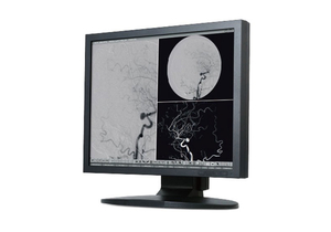 MONOCHROME LCD MULTI-MODALITY MEDICAL MONITOR DISPLAY, 19 IN, 100 TO 240 V, 1.3 MP (1280 X 1024 PIXEL) by Totoku