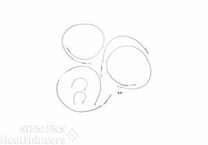 SET OF BOWDEN WIRES by Siemens Medical Solutions