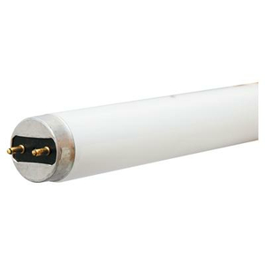 """36"""" 25W G13 BASE T8 LINEAR FLUORESCENT LAMP by GE Lighting"""
