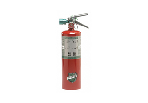 FIRE EXTINGUISHER 5B C 5 LB. HALOTRON by Buckeye