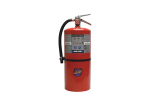 FIRE EXTINGUISHER BC 20 LB. 21-1/4 IN H by Buckeye