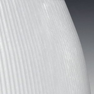 TRANS WHITE ACRYLIC OPTIC 16 by Hubbell Power Systems