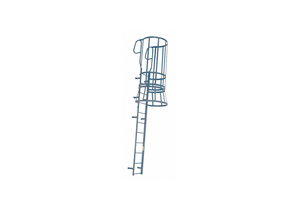 FIXED LADDER SFT CAGE WLKTHRU 25FT.8IN H by Cotterman