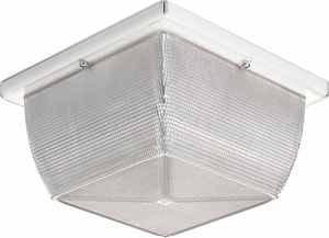 HI ABUSE LIGHT CFL SQUARE 3500K 75W by Lithonia Lighting